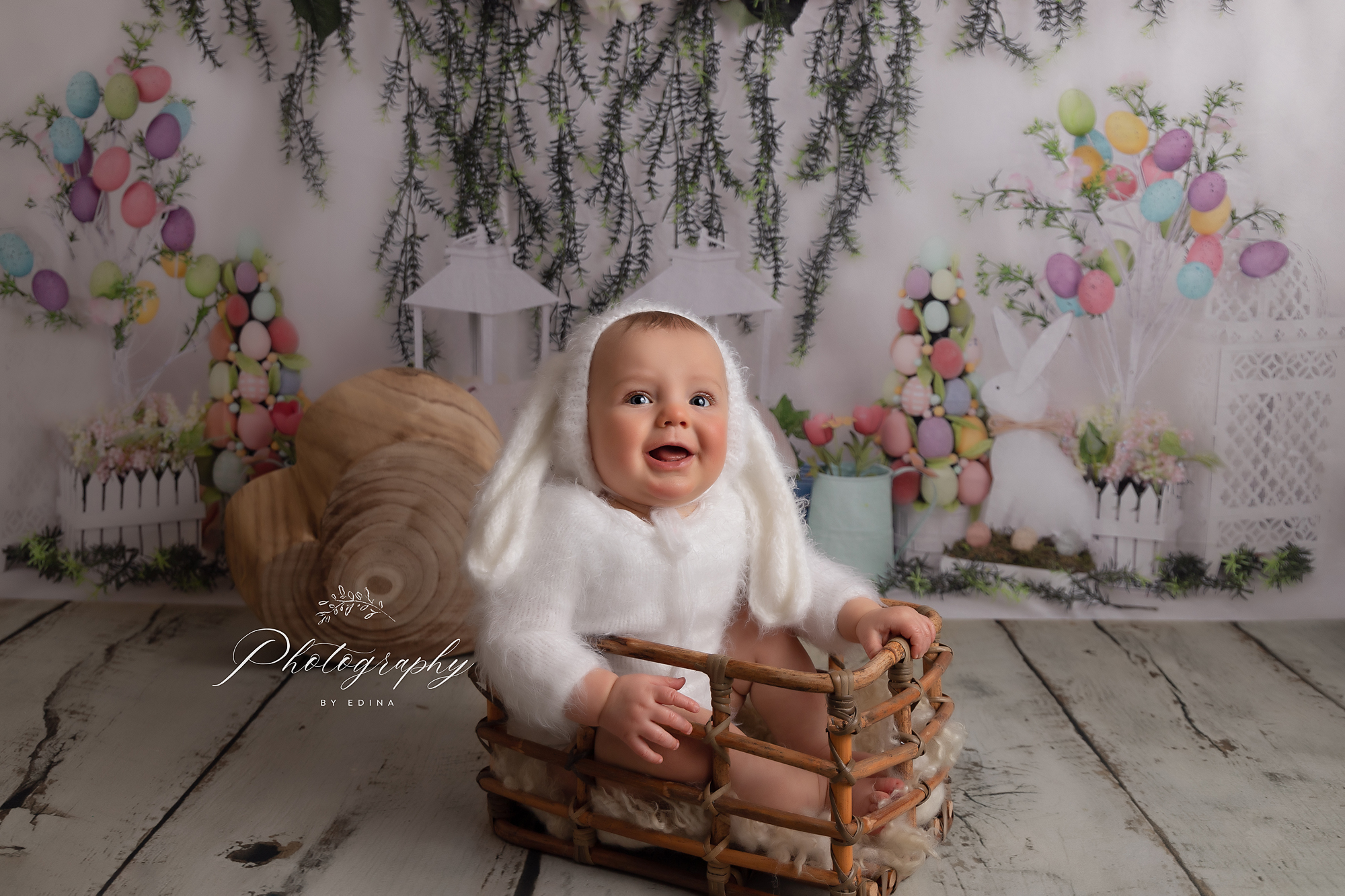 best baby photographer york